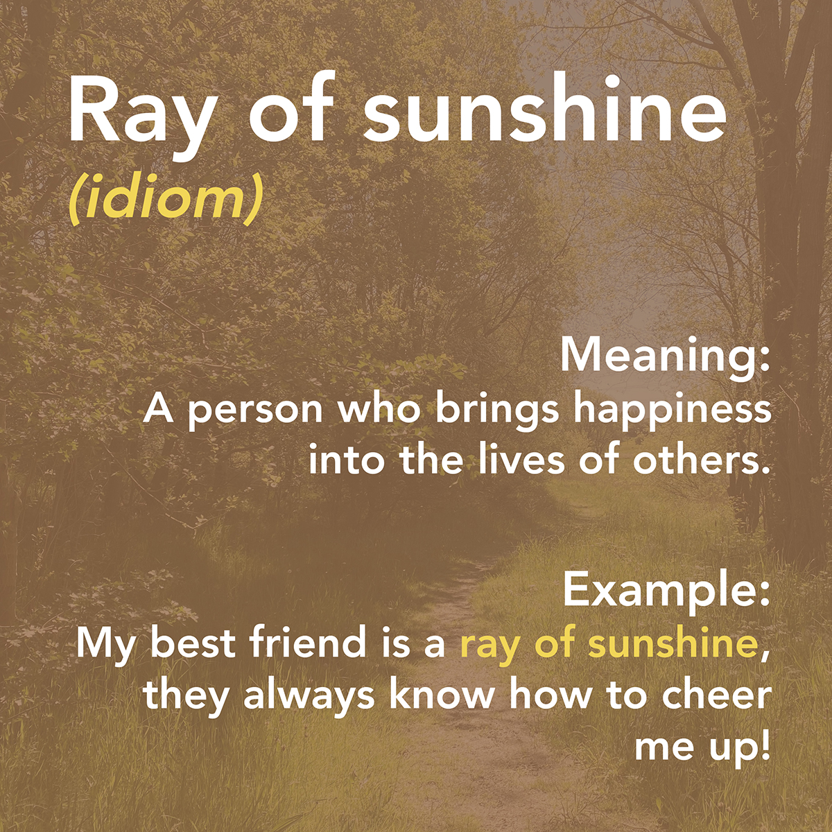 Summertime Vocabulary 2