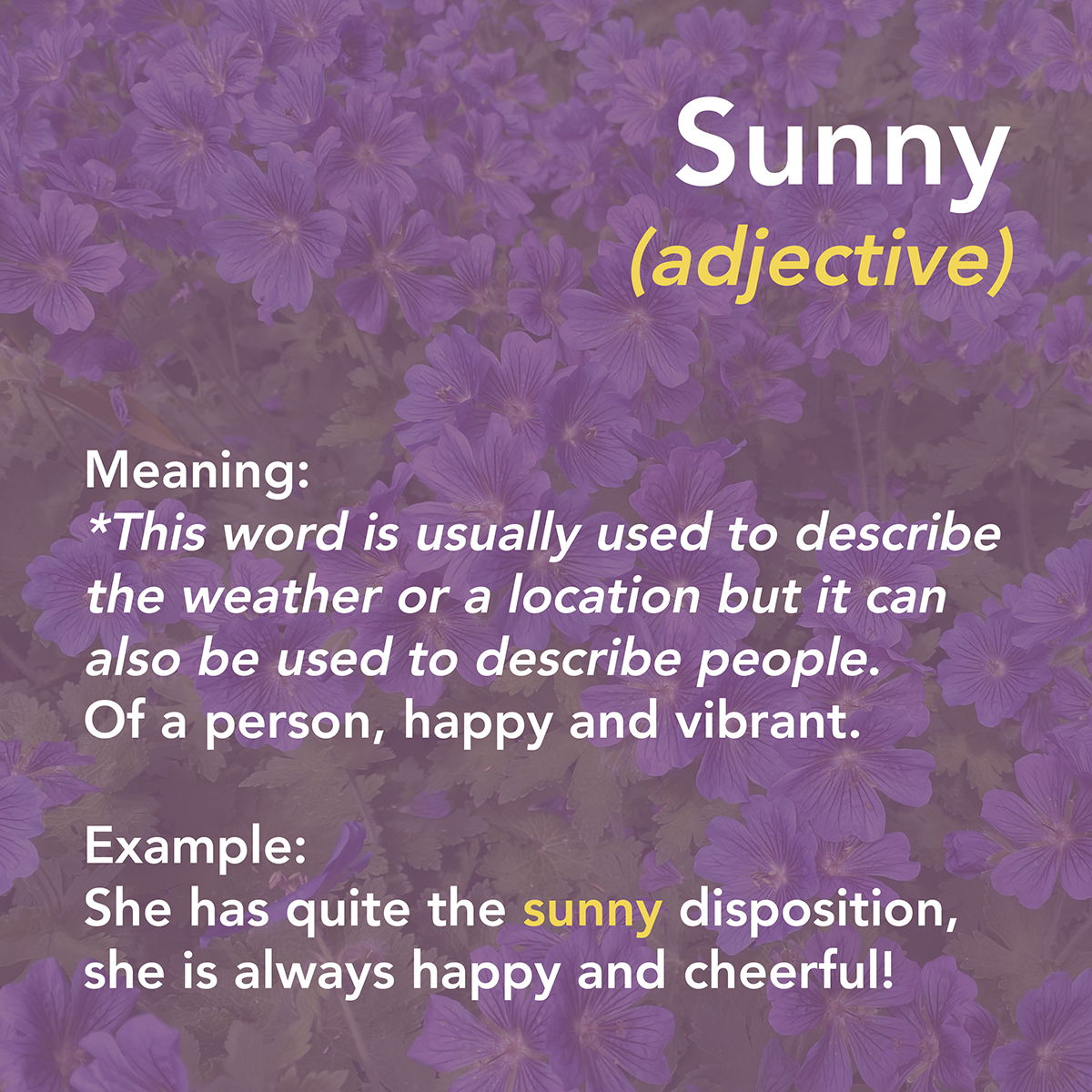 Summertime Vocabulary 5